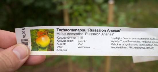 20140909 Rusina-7